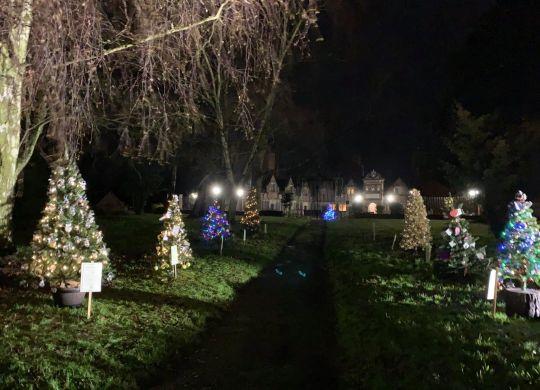 St Helens Xmas Tree Event