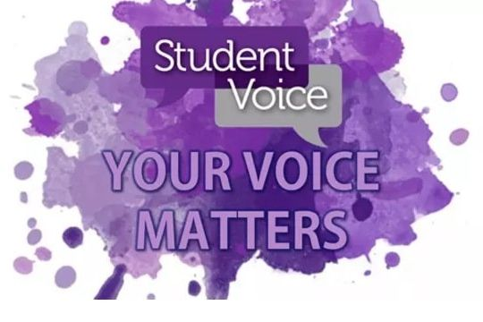 Student Voice Image